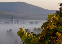 3. Tokaj wine region