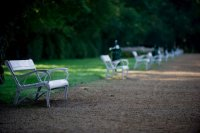 Margaret Island - Benches in the garden